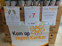 Molse stand.jpg (grote weergave)